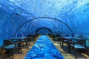 5.8 underwater